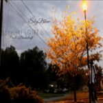 MP3: SkyBlew (@HeySkyBlew) » StreetLIGHTS [Prod. @_Backdraft_]